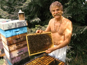 Yvon Achard, Bee Historian