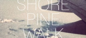 Shore Pine Walk by Matt Paxton