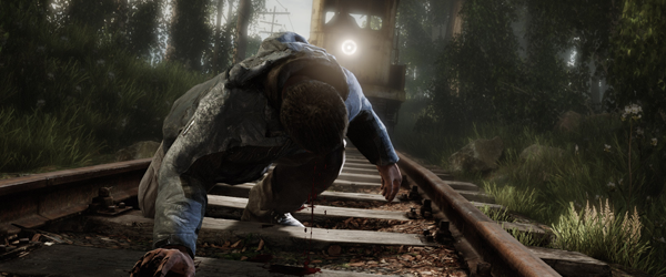 2014 The Vanishing of Ethan Carter